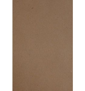 Papicolor Recycled kraft bruin A4 10 vel 100 g